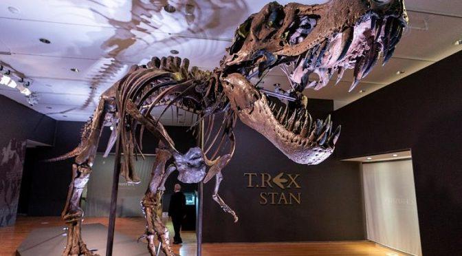 Devasa Dinozor İskeleti Açık Arttırmada 31.8 Milyon Dolara Satıldı